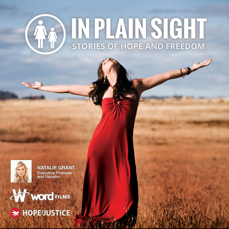 In Plain Sight Stories of Hope and Freedom 2015