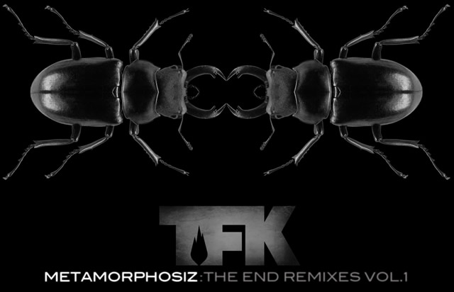 TFK - Metamorphosiz - The End Remixes Vol 1